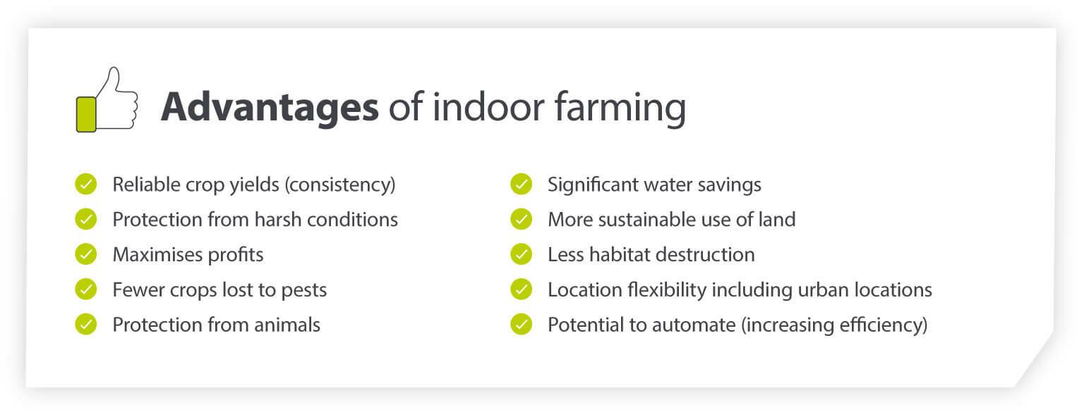 Advantages of Indoor Farming