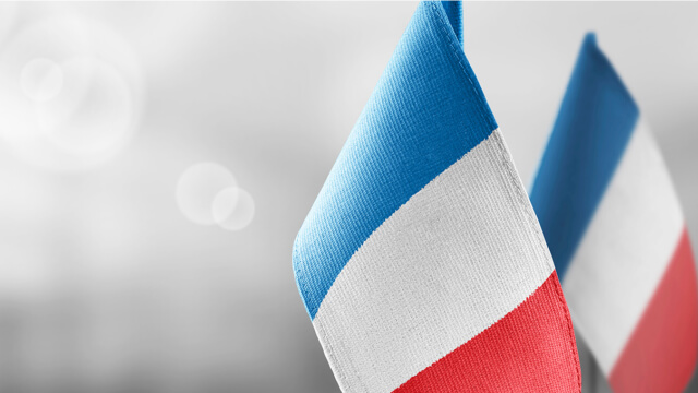 Dantherm French flags web
